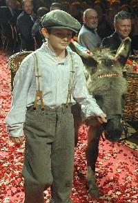 Der Esel der auf Rosen geht